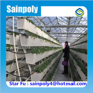 China PC-Sheet Hydroponic Greenhouse for Sale pictures & photos