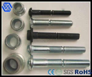 High Quality Wholesale Huck Bolt pictures & photos