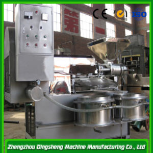 Factory Price Palm Kernel Oil Mill, Oil Expeller Machine pictures & photos
