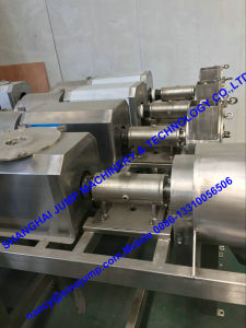 Blueberry Puree Production Line/Processing Line pictures & photos