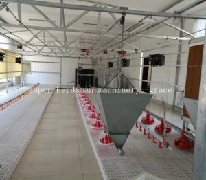 Automatic Chicken Feeders for Broiler Production pictures & photos