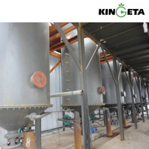 Kingeta 3MW Multi-Co-Generation Pyrolysis Biomass Energy Plant