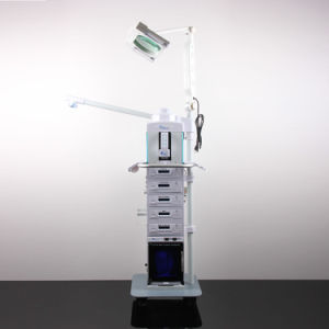 19-1 Multi-Functional Dermabrasion Ultrasound Vacuum Galvanic Bio Spray Beauty pictures & photos