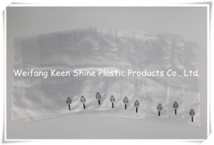 Promotional Transparent LDPE Zip Lock Plastic Bag pictures & photos