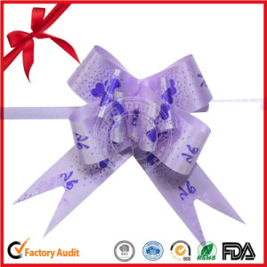 Decorative Ribbon Butterfly Printed Pull Bow pictures & photos