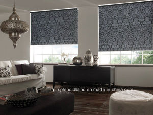 Roller Windows Blinds Fashion Windows Blinds Fashion Blinds pictures & photos