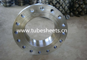 Forged Flanges/Tank Flanges/Pipe Flanges