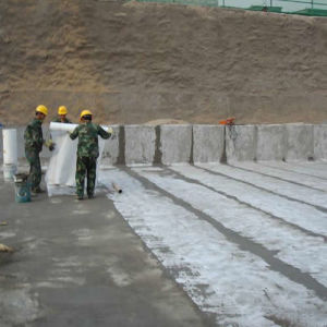 Polypropylene & Polyethylene Polymer Waterproofing Membrane/Roof Underlayment pictures & photos
