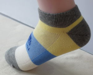 Summer Silver Cotton Boat Socks pictures & photos