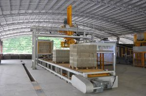 Block Making Machine, Brick Making Machine, Fully Automatic pictures & photos