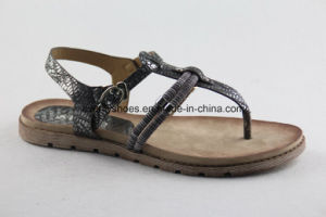 New Arrival Sexy Slipper Women Sandal for Beach pictures & photos