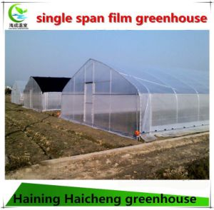 High Quality Agriculture Vegetable Garden Tomato Plastic Film Greenhouse Supplier