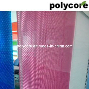 Colorful Anti-UV Polycarbonate Honeycomb Panel pictures & photos