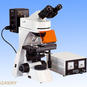 Professional High Quality Epi-Fluorescence Microscope (EFM-3001) pictures & photos