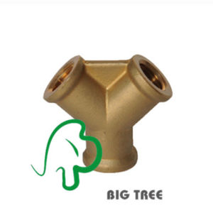 Brass Y Shape Pipe Fitting/Connector pictures & photos