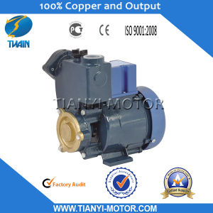 Gp125 0.125kw China Water Pump Price