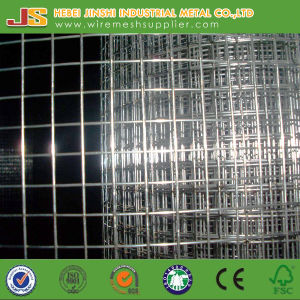 Galvanized Welded Type Animal Welded Mesh Roll Made in China pictures & photos