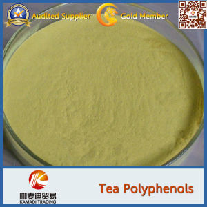 High Purity Green Tea Extract 98% Tea Polyphenols
