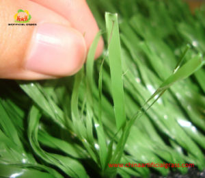 Fibrillated Yarn Professional Artificial Grass for Soccer