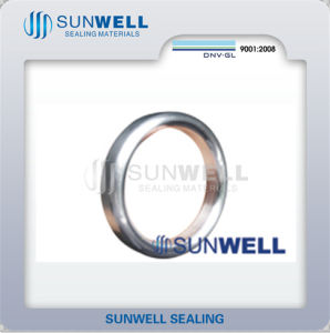 Oval Ring Joint Gaskets Sunwell 800 pictures & photos