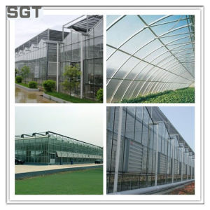 Toughened Low Iron Glass 4mm for Greenhouse Glass pictures & photos