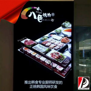 UV Soft PVC Graphic for Light Box (UV-05) pictures & photos