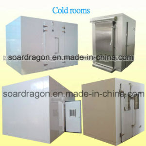 Chicken Storage Cold Chamber Cold Room pictures & photos