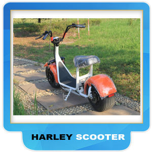 2017 New Harley Electric Scooter Citycoco 60V 1000W pictures & photos