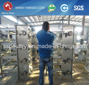 Poultry Machines and Equipment Battery Cage for 120 Days Chicks pictures & photos