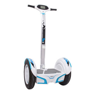 The Popular Two Wheel Electric Scooter