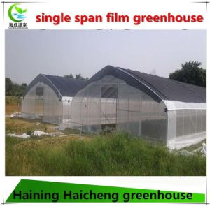 Hoop Plastic Film Greenhouse for Agricultural