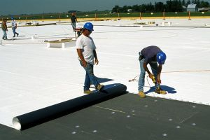 EPDM Membrane Price with Good Quality pictures & photos