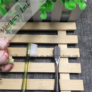 4~5 Star High Quality Transparent Plastic Handlesoft Brush Toothbrush for Hotel pictures & photos