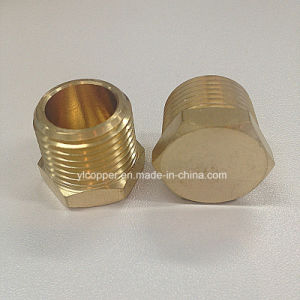 Brass Plug (BP) pictures & photos