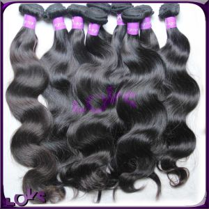 Top Quality 100% Natural Brazilian Virgin Human Hair