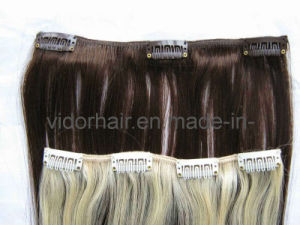 Virgin Remy Clip in Hair Extension (WDL-CP)