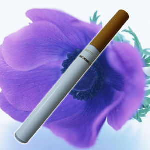Electronic Cigarette (SG201)