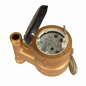 Multi Jet Wet Type Vane Wheel Water Meter (MJ-LFC-F2-3) pictures & photos