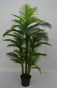 High Quality Artificial Plants of Palm Tree F03302210
