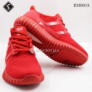 Fashion Jacquard Shoes Running Shoes, Sport Shoes