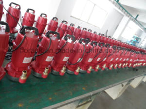 Good Quality of Submersible Water Pump with CE pictures & photos