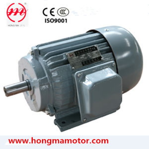 IEC Standard Cast Iron Three Phase Induction Motor pictures & photos