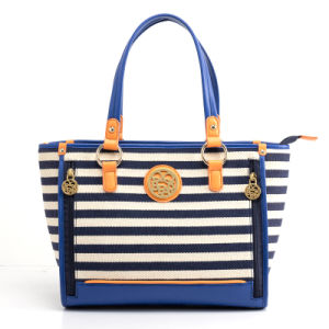 Designer Latest Ladies Fashion Canvas Small Striped Handbag (pH1709)