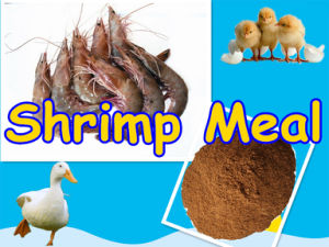 Shrimp Meal (protein 60%min) for Feed Additive