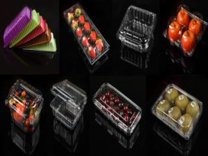 China Manufacturer Walmart Fruit Packaging Use PP Pet Plastic Fruit Storage Box pictures & photos