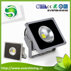 New LED Flood Light 50W Aluminum Material Exprienced Manufucturer