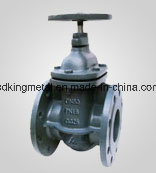 Cast Iron Double Parallel Flashboards Gate Valve pictures & photos