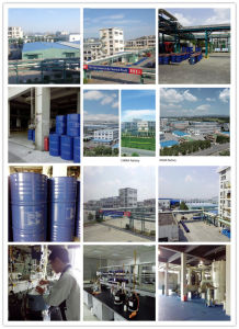 Polyether Polyol for Foam Manufacturer (ZL-PPG) pictures & photos