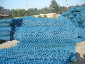 "PVC Coated Hexagonal Wire Netting (1/2"" 3/4"" 1"") pictures & photos"