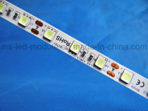 5054 LED Strip with Tube Waterproof pictures & photos